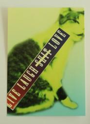 LLSL -kortti, 2e